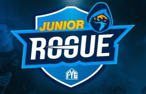 Rogue Announces a New Fortnite Mentor Program, Junior Rogue