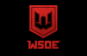 WSOE Tries to Bring MMA Events to Esports