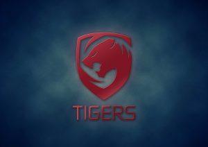 Tigers wins First DPC Minor