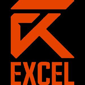 lec excel logo