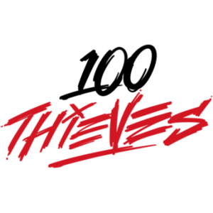 100 thieves logo